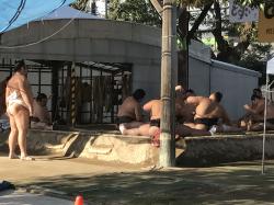 入間市相撲.png